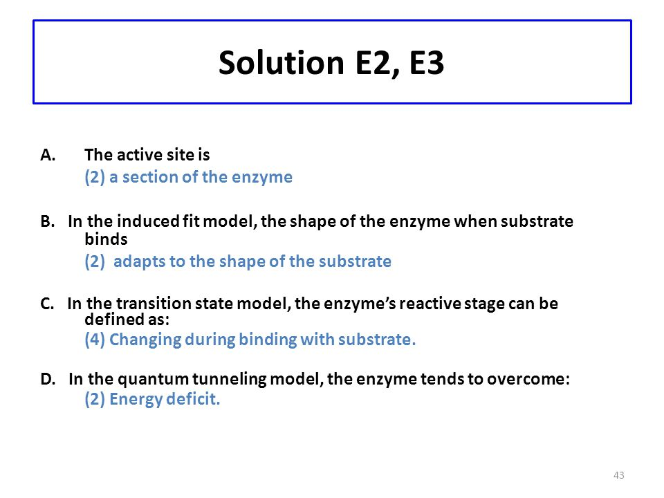 Solution E2, E3 The active site is (2) a section of the enzyme
