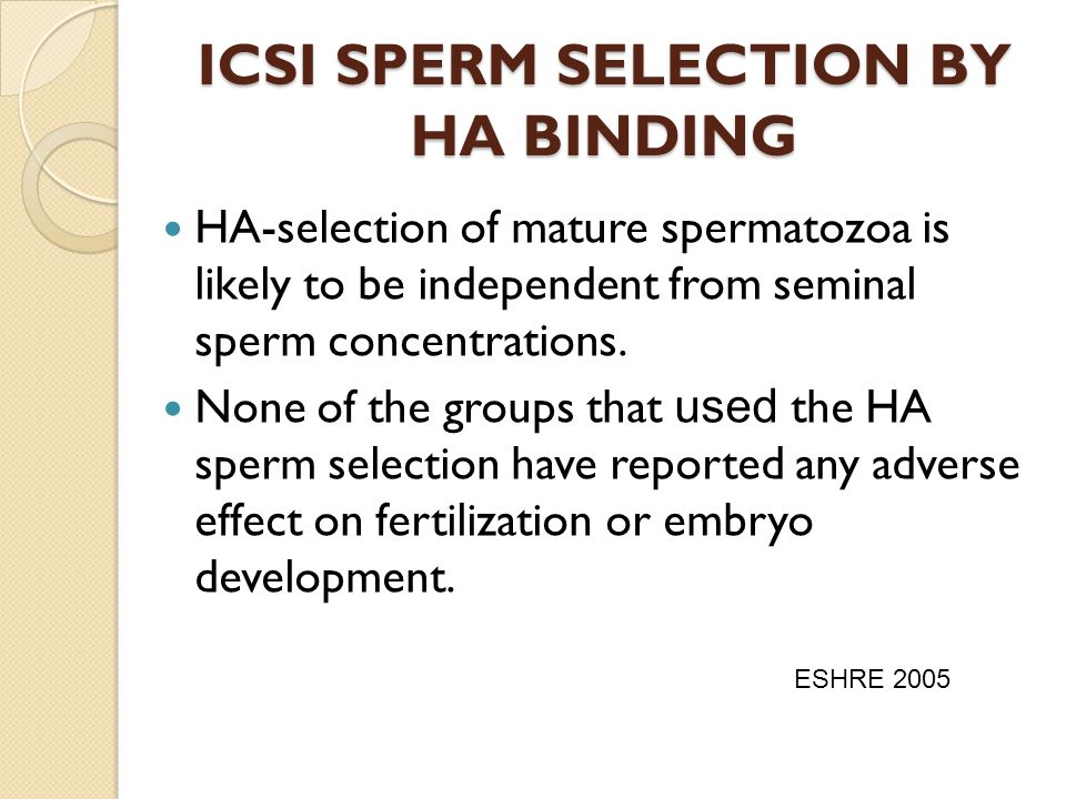 ICSI SPERM SELECTION BY HA BINDING