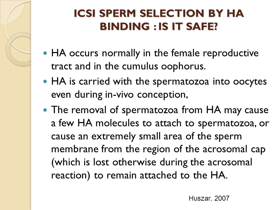 ICSI SPERM SELECTION BY HA BINDING : IS IT SAFE