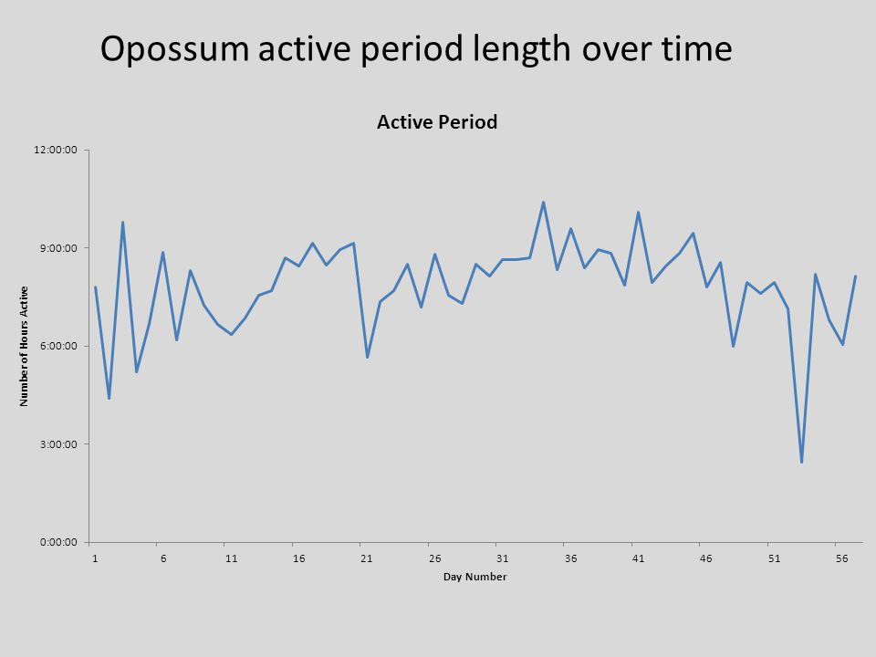 Opossum active period length over time