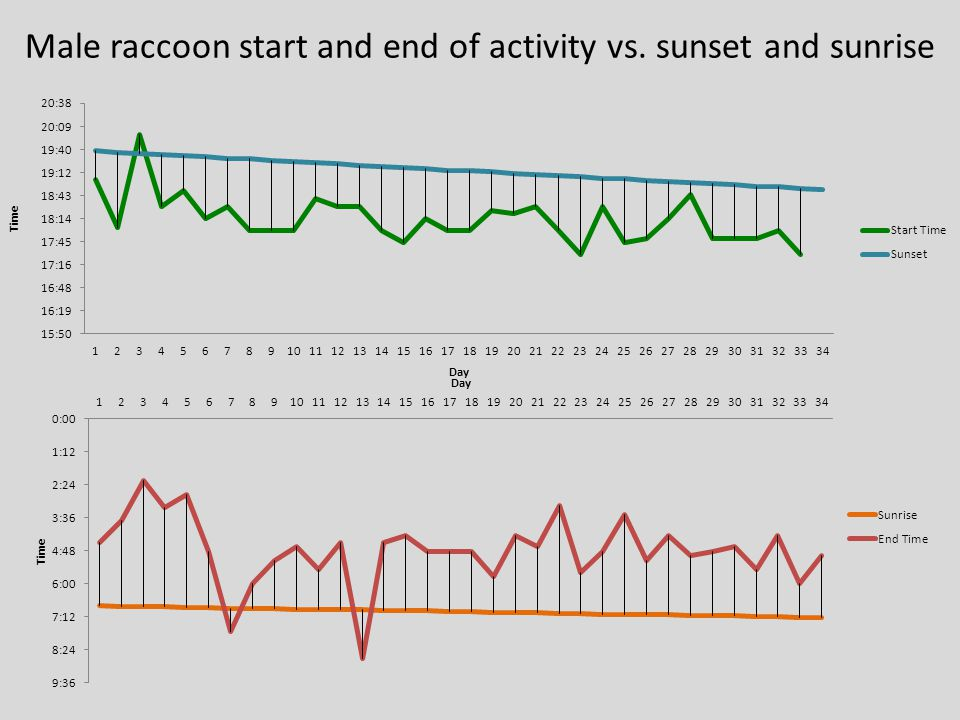 Male raccoon start and end of activity vs. sunset and sunrise