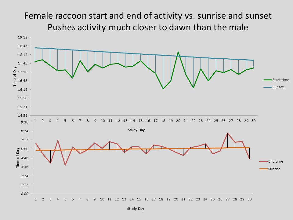 Female raccoon start and end of activity vs