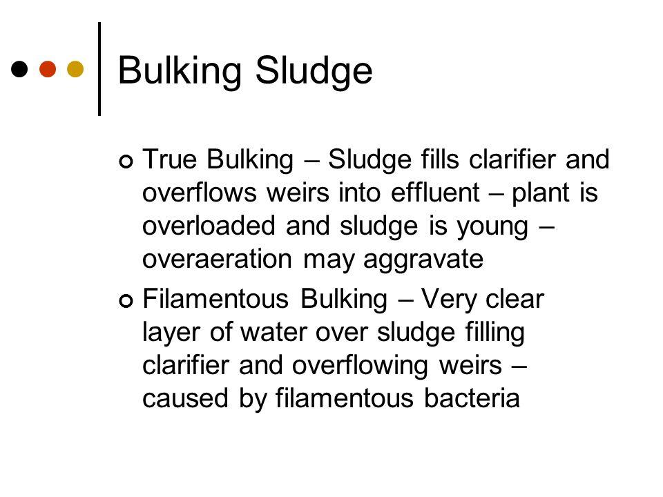 Bulking Sludge