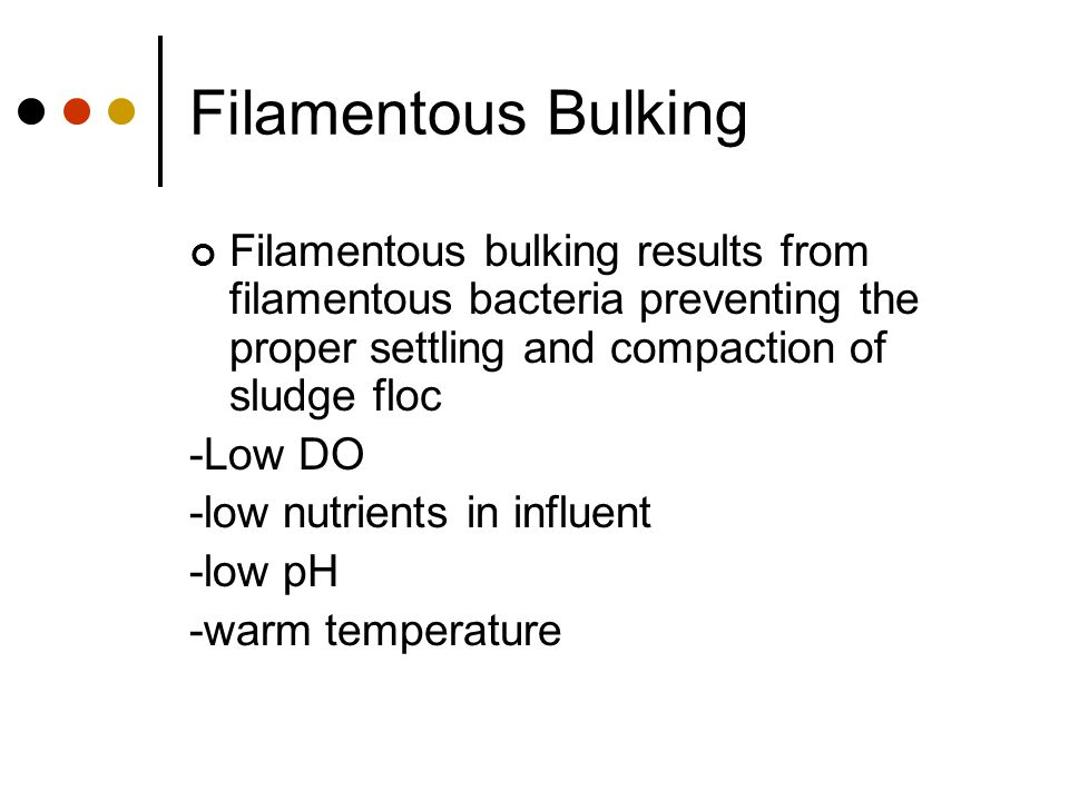 Filamentous Bulking Filamentous bulking results from filamentous bacteria preventing the proper settling and compaction of sludge floc.