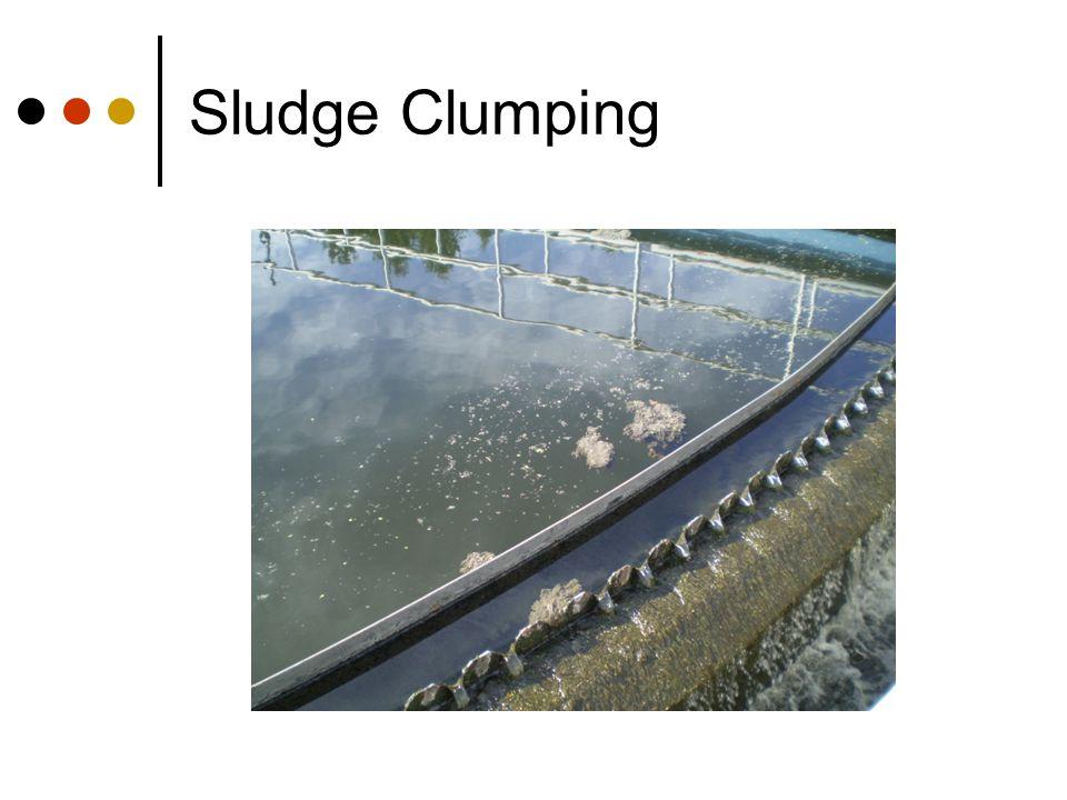 Sludge Clumping