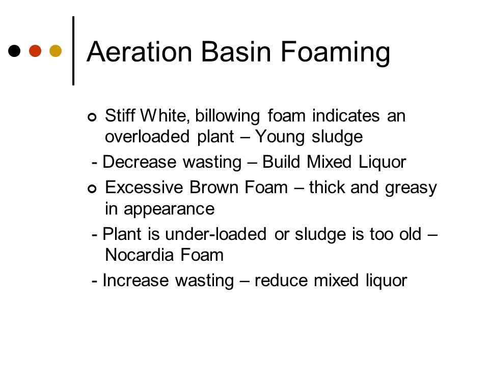 Aeration Basin Foaming