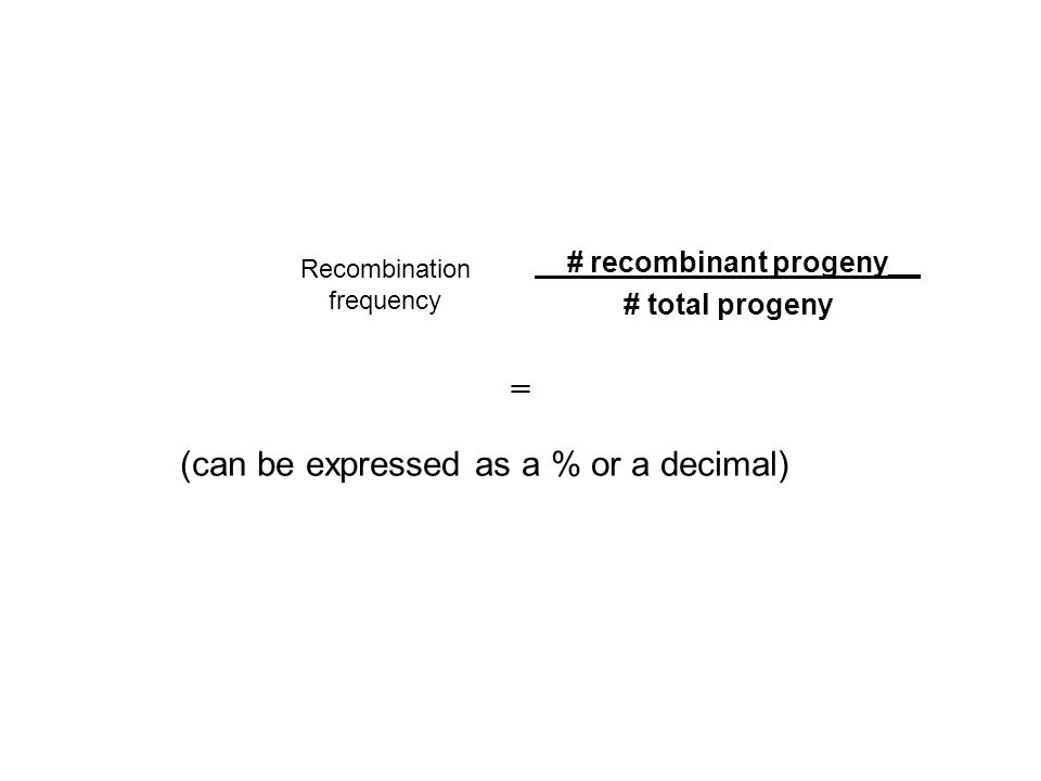 # recombinant progeny__ # total progeny
