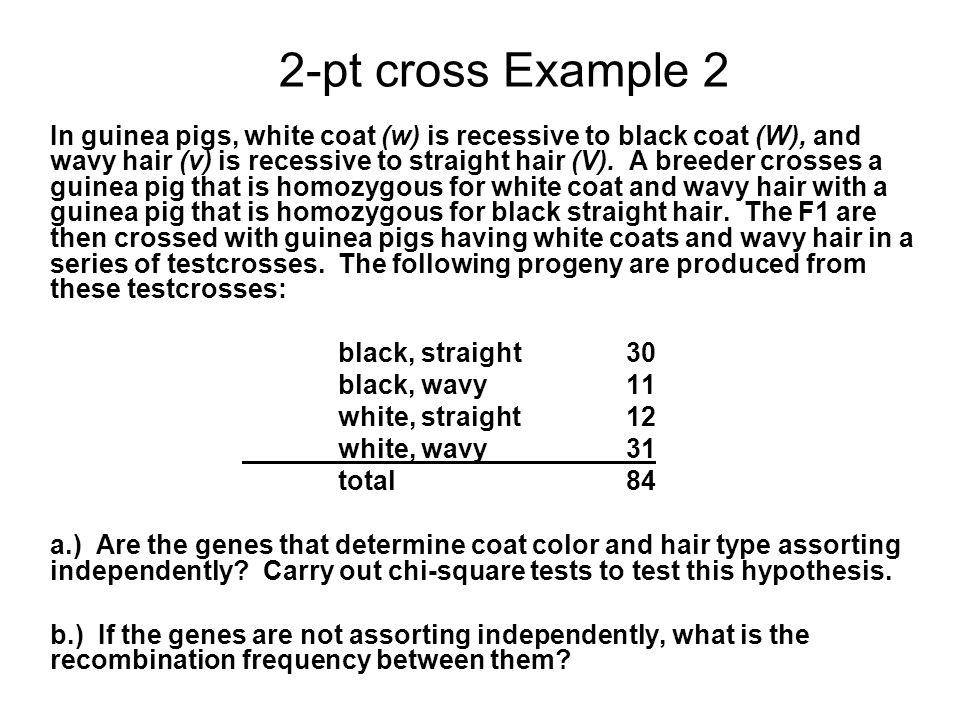 2-pt cross Example 2