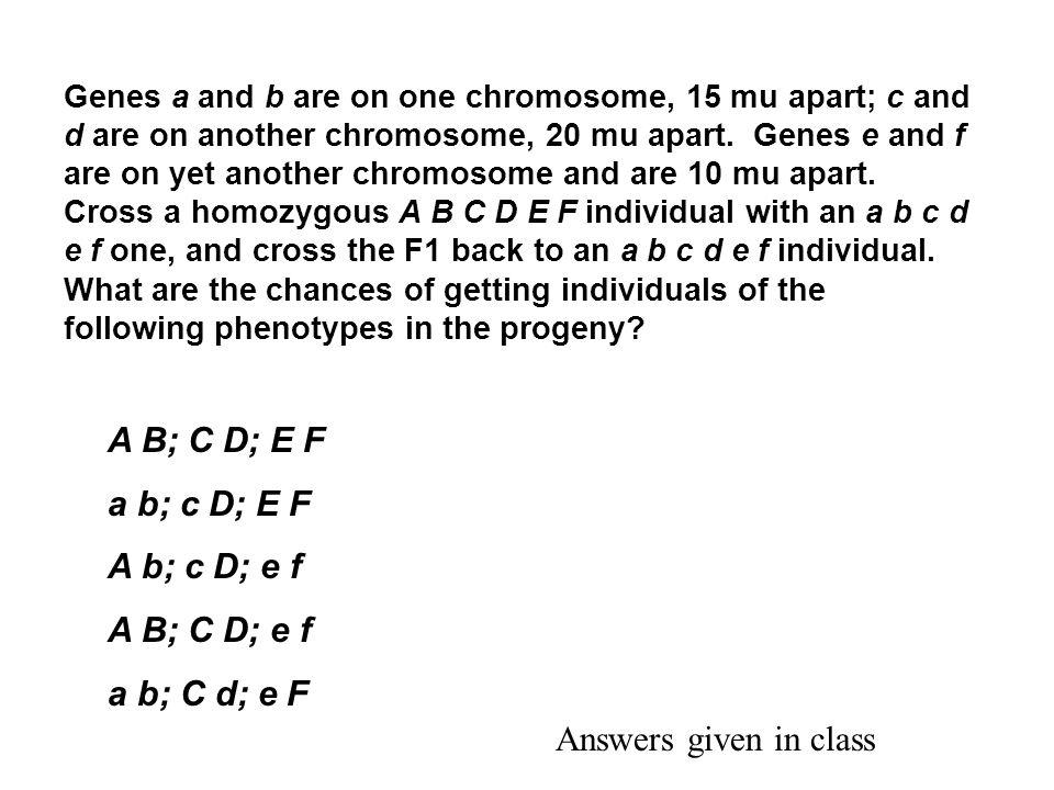 A B; C D; E F a b; c D; E F A b; c D; e f A B; C D; e f a b; C d; e F