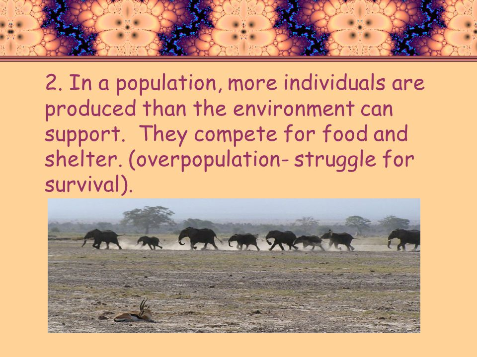 2. In a population, more individuals are produced than the environment can support.