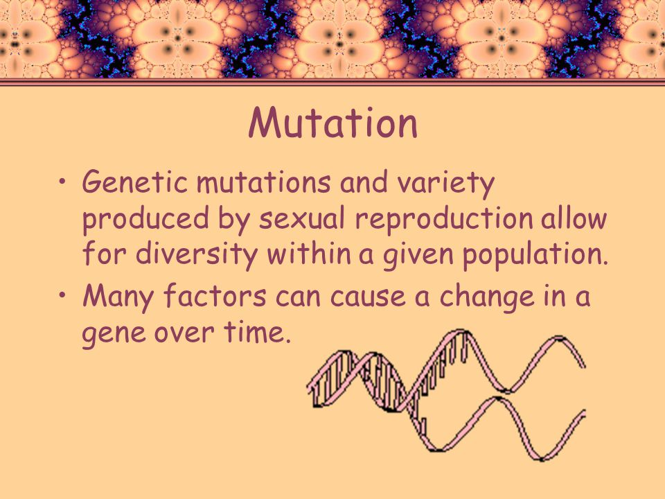 Mutation Genetic mutations and variety produced by sexual reproduction allow for diversity within a given population.