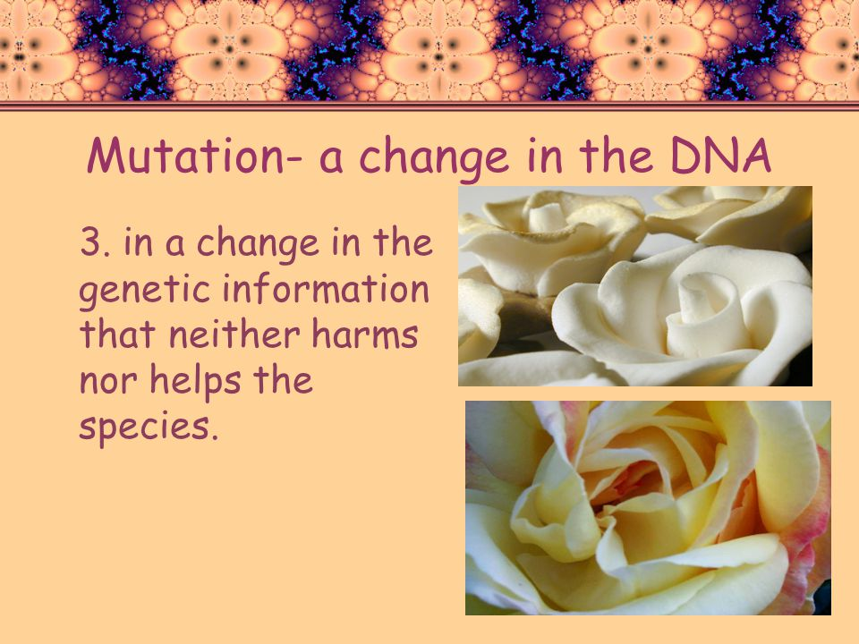 Mutation- a change in the DNA