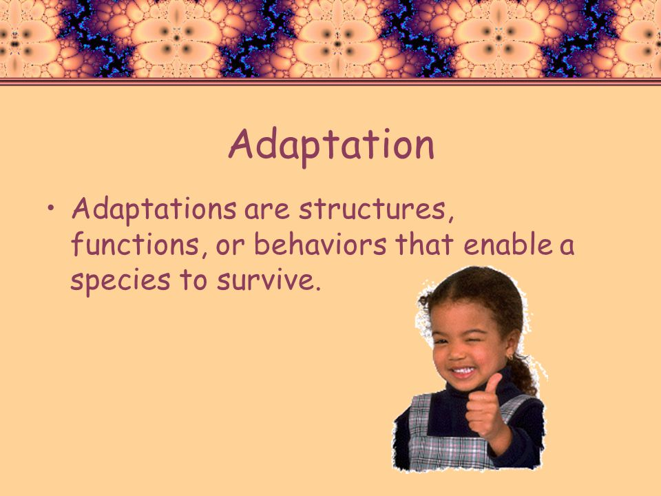 Adaptation Adaptations are structures, functions, or behaviors that enable a species to survive.