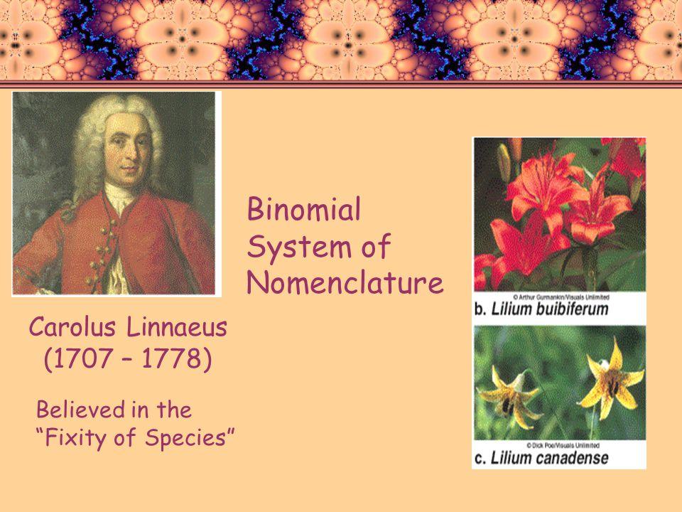 Binomial System of Nomenclature