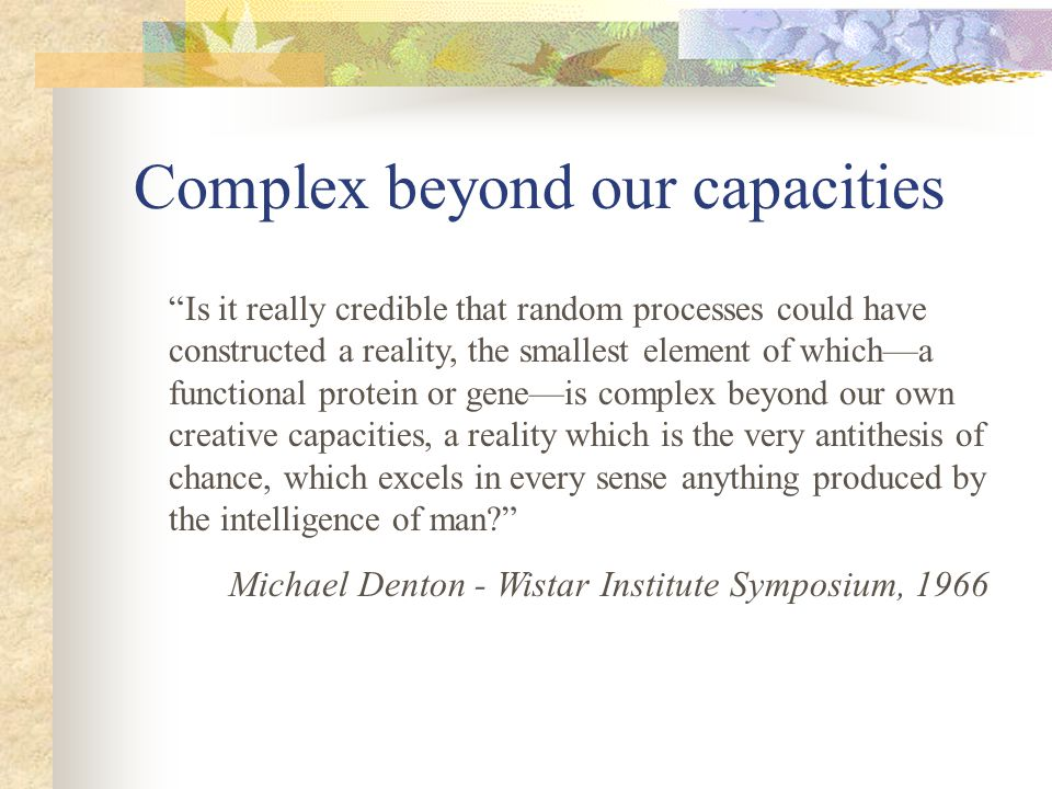 Complex beyond our capacities