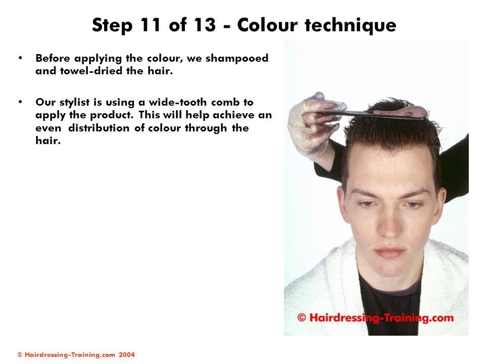 Step 11 of 13 - Colour technique