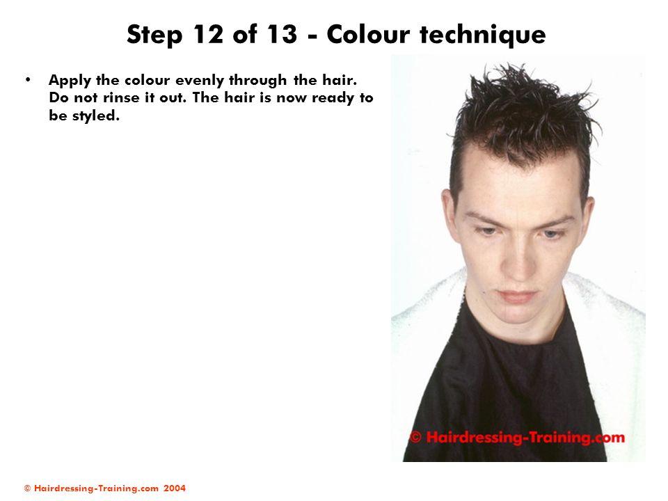Step 12 of 13 - Colour technique