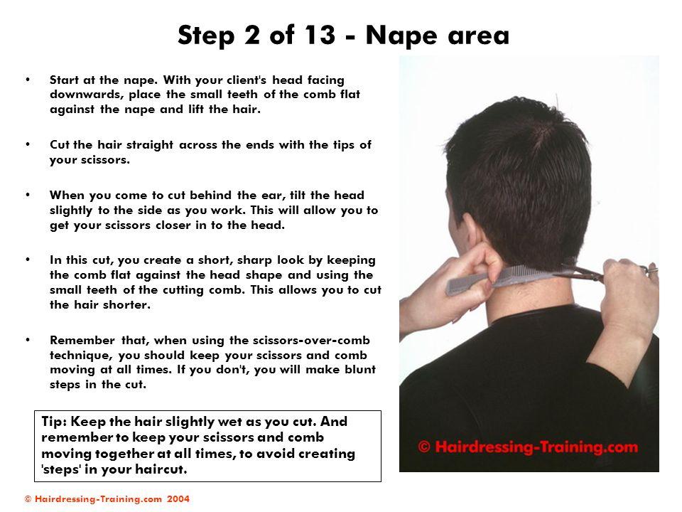 Step 2 of 13 - Nape area