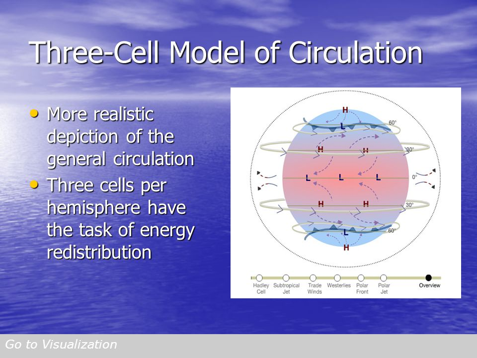 Three-Cell Model of Circulation