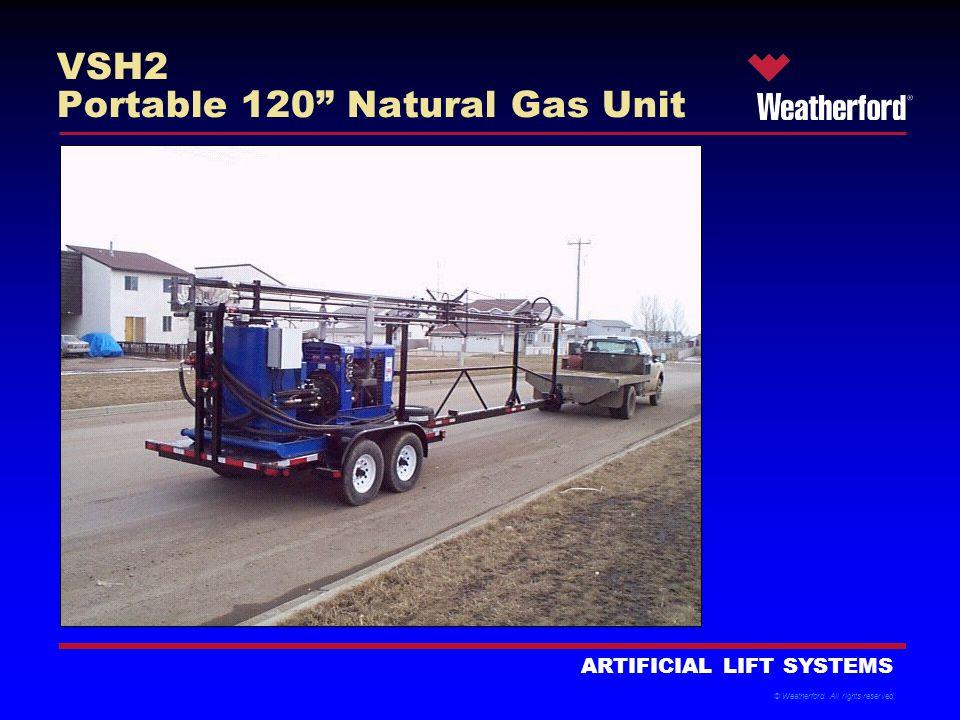 VSH2 Portable 120 Natural Gas Unit