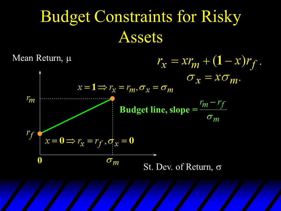 Budget Constraints for Risky Assets