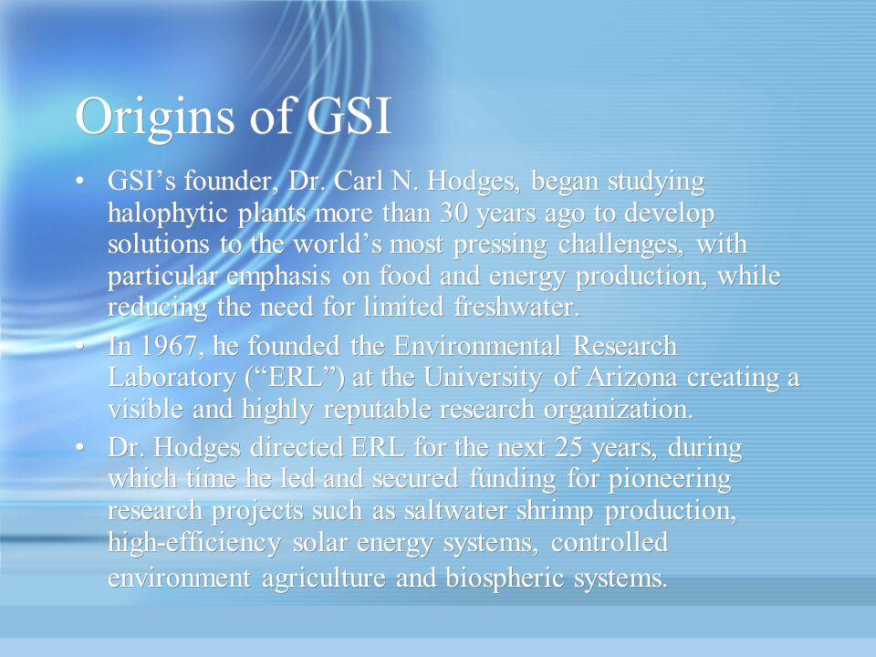 Origins of GSI