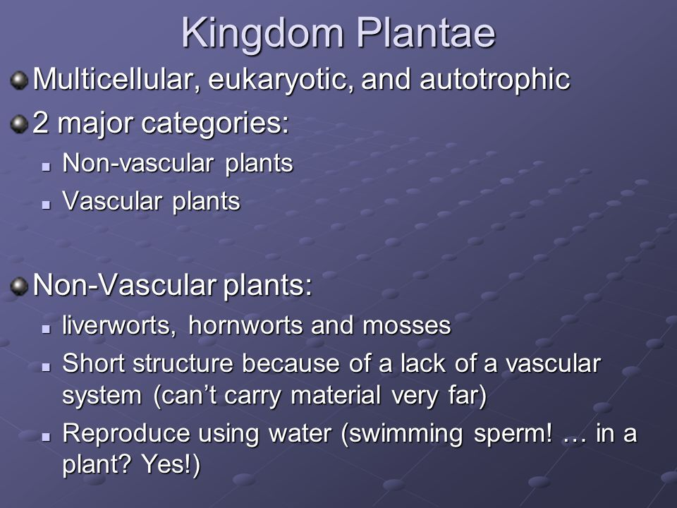 Kingdom Plantae Multicellular, eukaryotic, and autotrophic