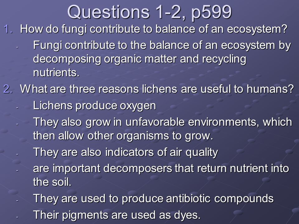 Questions 1-2, p599 How do fungi contribute to balance of an ecosystem