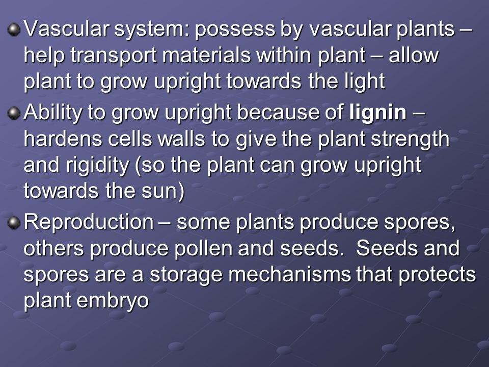 Vascular system: possess by vascular plants – help transport materials within plant – allow plant to grow upright towards the light
