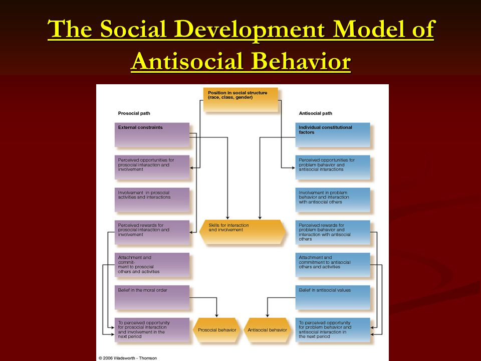 The Social Development Model of Antisocial Behavior
