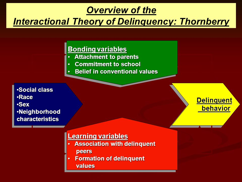 Interactional Theory of Delinquency: Thornberry