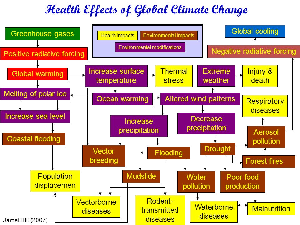 Health Effects of Global Climate Change