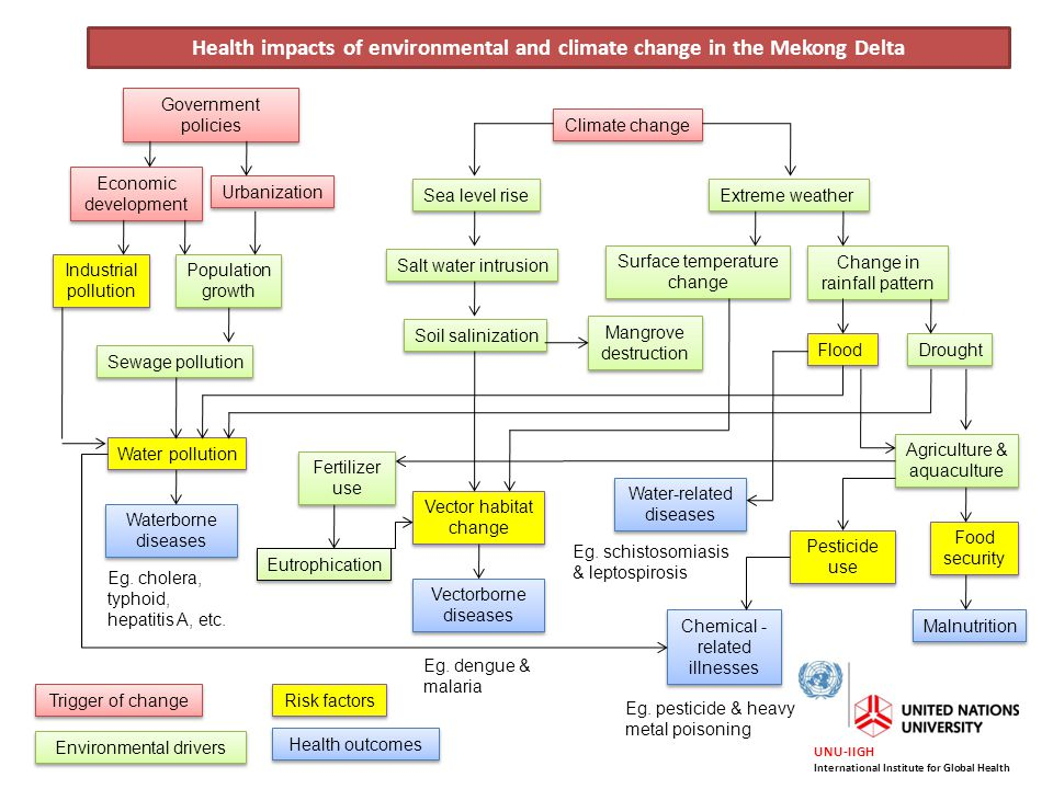 Health impacts of environmental and climate change in the Mekong Delta