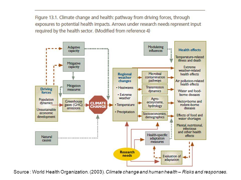 Source : World Health Organization. (2003)