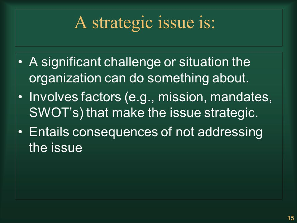 A strategic issue is: A significant challenge or situation the organization can do something about.