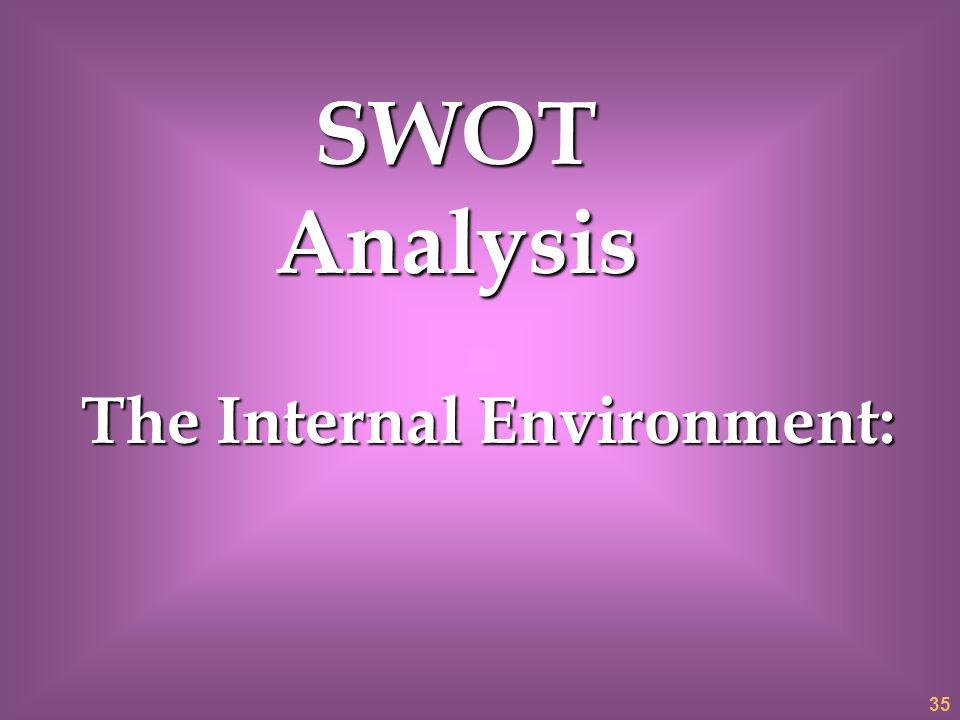 The Internal Environment: