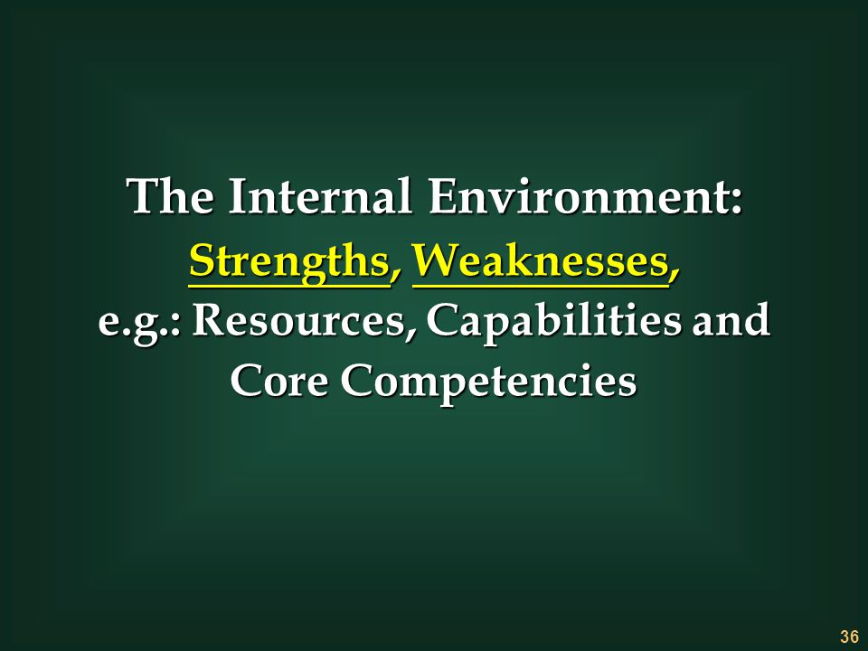 The Internal Environment: e.g.: Resources, Capabilities and