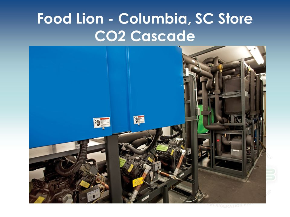 Food Lion - Columbia, SC Store CO2 Cascade