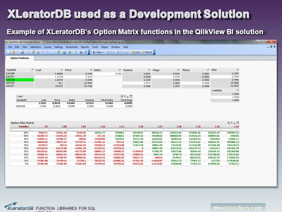 XLeratorDB used as a Development Solution