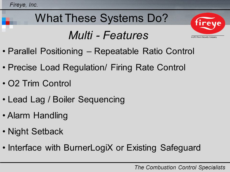 What These Systems Do Multi - Features