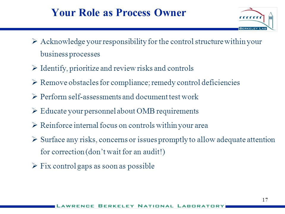 Your Role as Process Owner