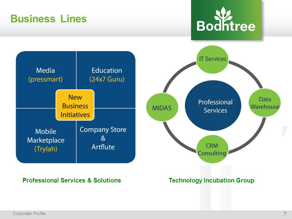 Business Lines Corporate Profile Professional Services & Solutions