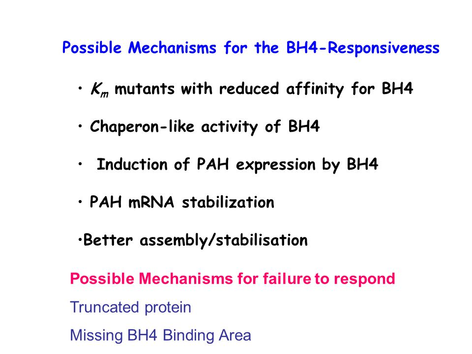 Possible Mechanisms for the BH4-Responsiveness