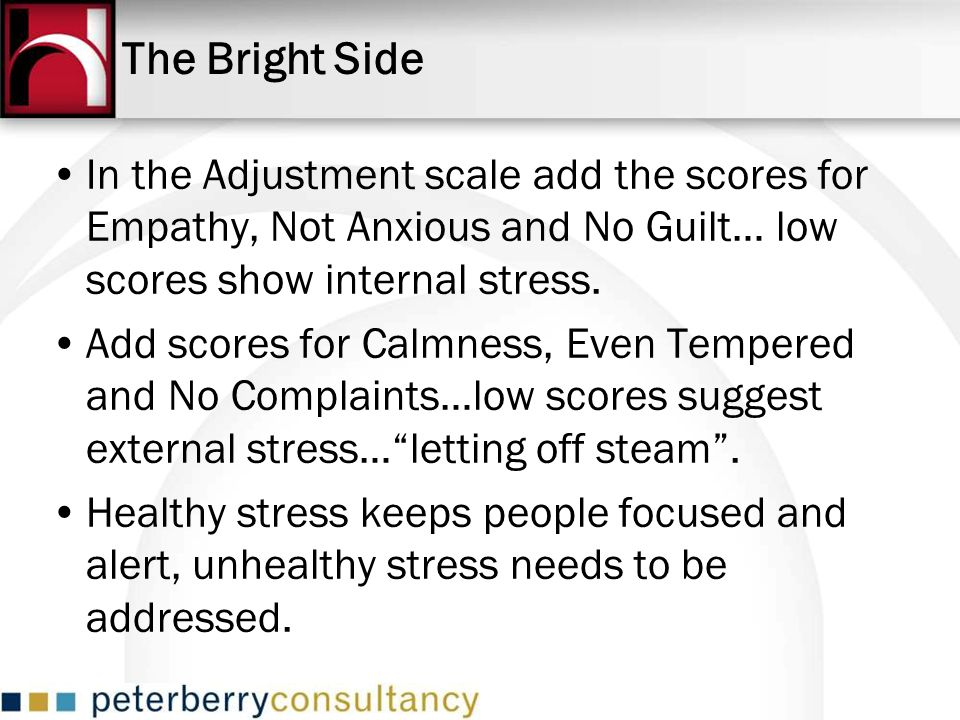 The Bright Side In the Adjustment scale add the scores for Empathy, Not Anxious and No Guilt… low scores show internal stress.