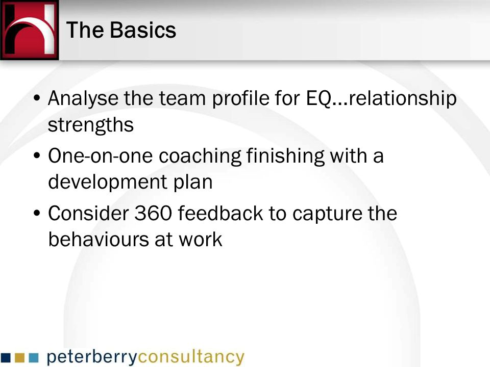 The Basics Analyse the team profile for EQ...relationship strengths