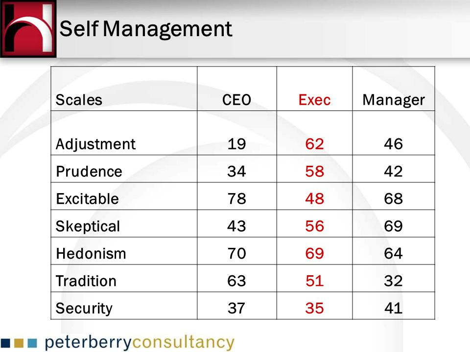 Self Management Scales CEO Exec Manager Adjustment 19 62 46 Prudence