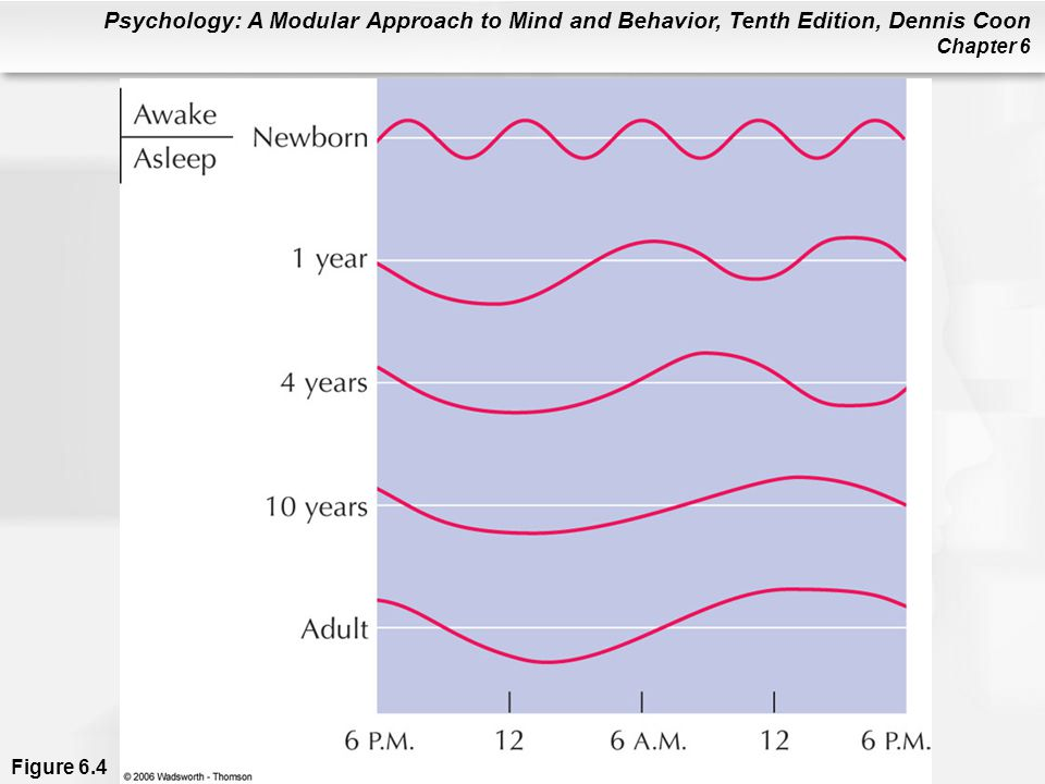 Figure 6. 4 Development of sleep patterns