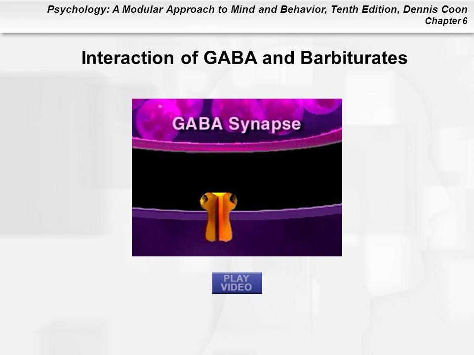 Interaction of GABA and Barbiturates