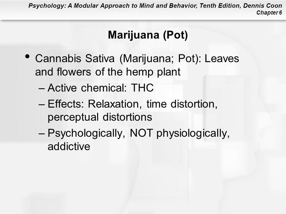 Marijuana (Pot) Cannabis Sativa (Marijuana; Pot): Leaves and flowers of the hemp plant. Active chemical: THC.