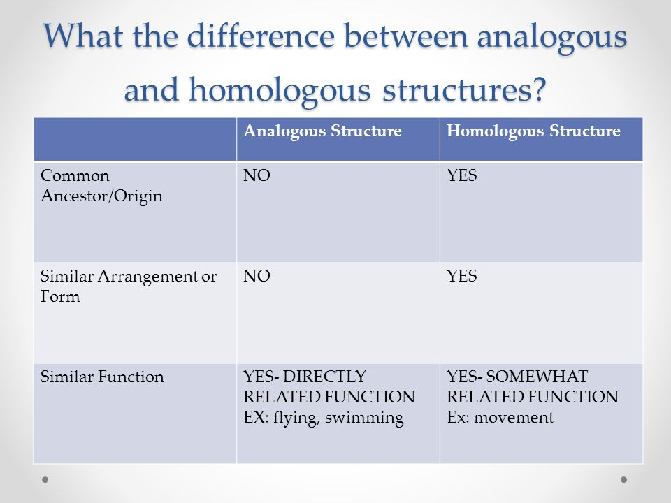 What the difference between analogous and homologous structures